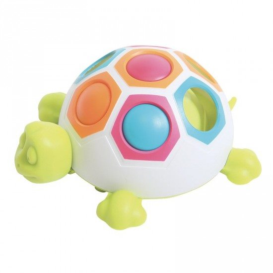 Tortue doigts-malins